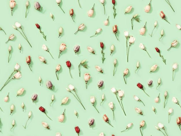 Naadloos regelmatig creatief patroon van natuurlijke droge bloemen eustoma op zachtgroen. Premium Foto