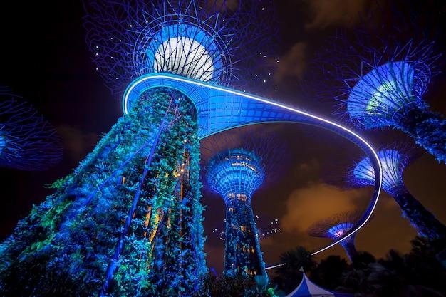 Nachtlichtshow verlichting in garden by the bay Premium Foto