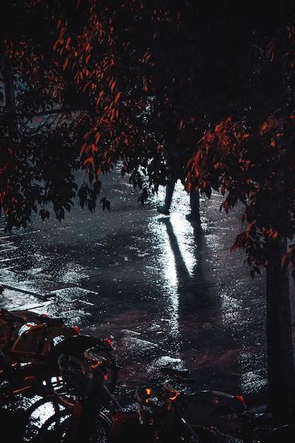 Natte bestrating 's nachts na regen Gratis Foto