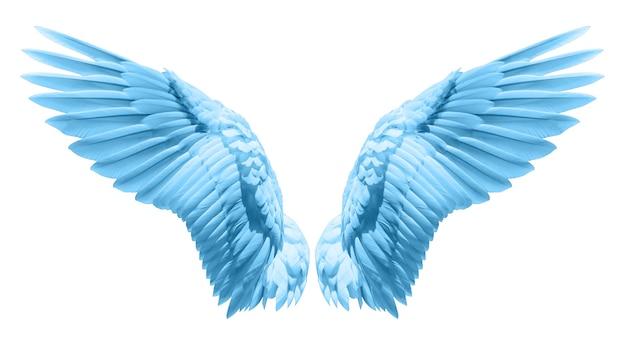 Natuurlijk blauw vleugelgewaad Premium Foto