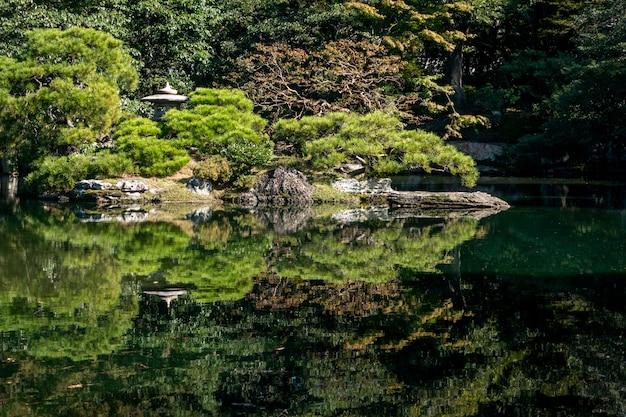 Natuurlijke groene bomen in een japanse tuin Premium Foto