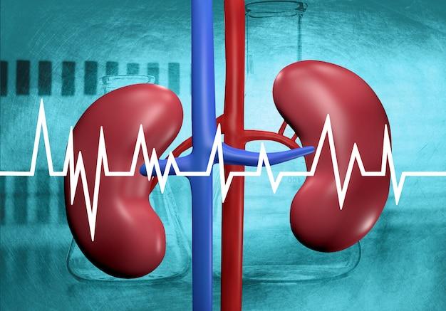 Nier in laboratoriumanalyse Premium Foto
