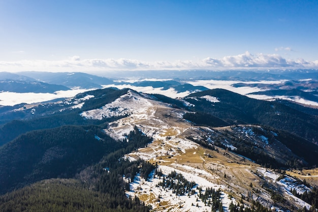 Ochtend in de bergen. karpaten, oekraïne, europa schoonheidswereld Gratis Foto