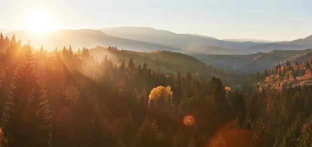 Ochtendmist kruipt met kladjes over de herfstbergbos bedekt met bladgoud. Gratis Foto