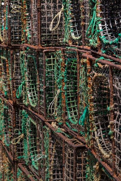 Octopus vissenvallen Premium Foto