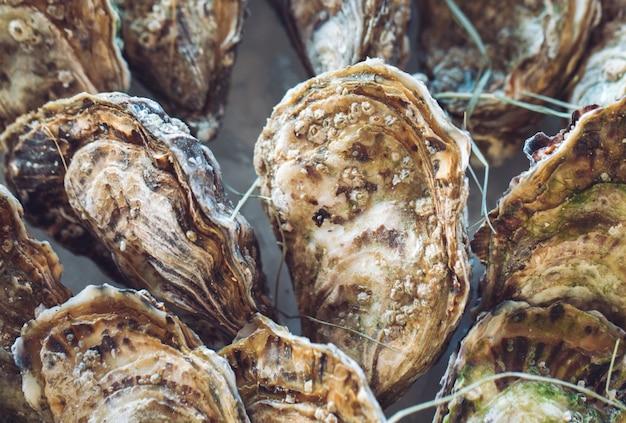 Oesters en andere zeevruchten op ijs. Premium Foto
