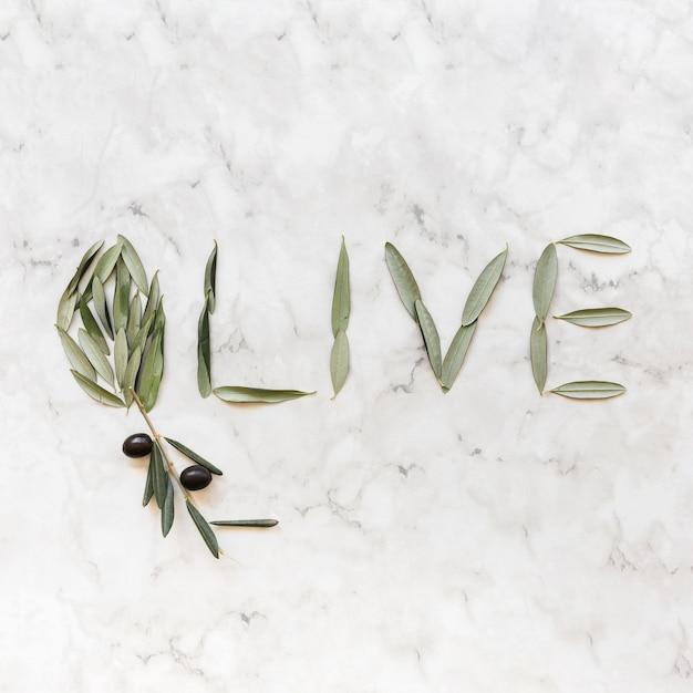 Olijfwoord dat met olijfbladeren wordt gemaakt op marmeren achtergrond Gratis Foto