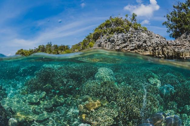 Onder het oppervlak van een eiland Gratis Foto