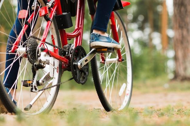 Onderaanzicht fiets op bosweg Gratis Foto