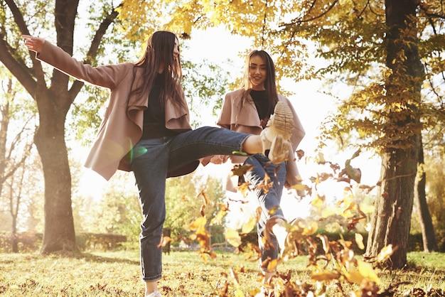 Onderaanzicht van jonge lachende brunette tweeling meisjes plezier en bladeren met hun voeten schoppen tijdens het wandelen in herfst zonnig park op onscherpe achtergrond. Premium Foto