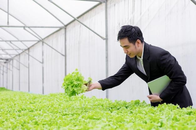 Ondernemers onderzoeken kwaliteitsrapporten van biologische groenten. Premium Foto