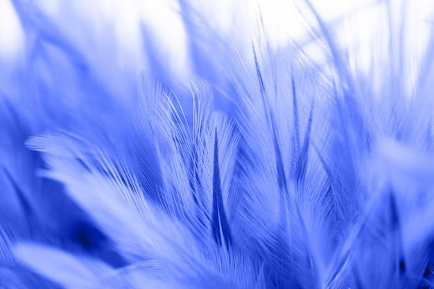 Onduidelijk beeldstyl en zachte kleur van de textuur van de kippenveer voor achtergrond Premium Foto
