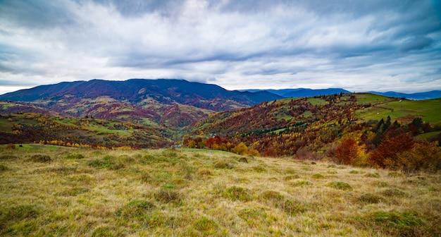 Ongewoon mooie natuur van de karpaten in prachtige heuvels, fantastische lucht van kleurrijke bossen en een klein dorp Premium Foto