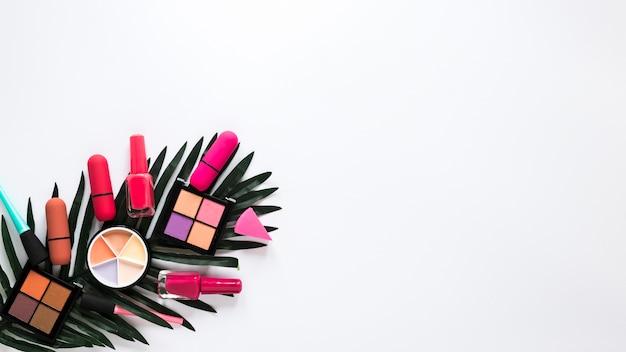 Oogschaduwwen met lippenstiften op groen blad Gratis Foto
