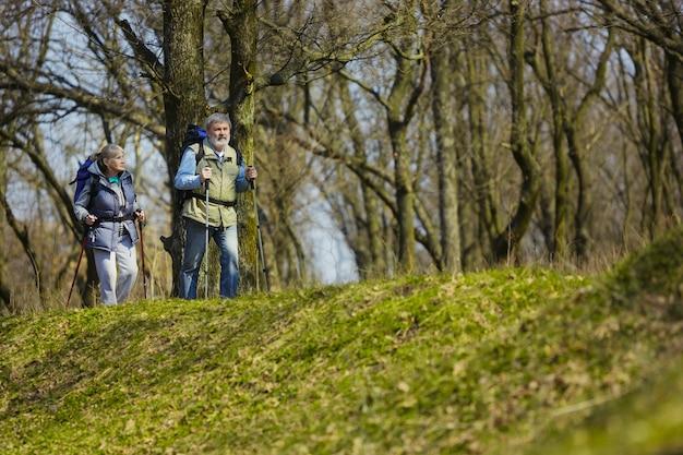Op zoek naar de beste emoties. leeftijd familie paar man en vrouw in toeristische outfit wandelen op groen gazon in de buurt van bomen in zonnige dag. concept van toerisme, gezonde levensstijl, ontspanning en saamhorigheid. Gratis Foto