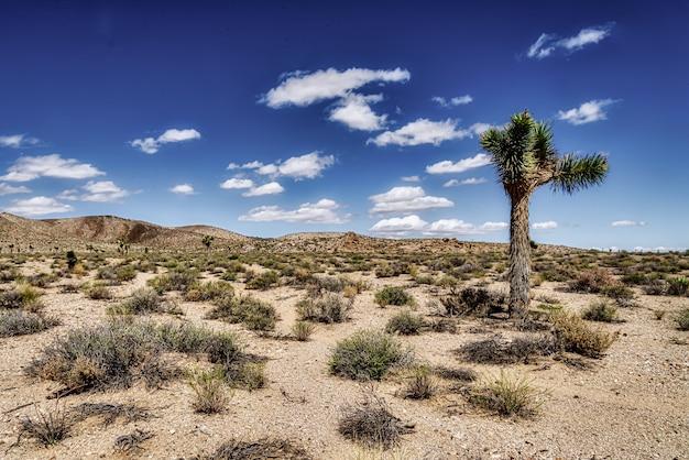 Open woestijngebied met prachtige heuvels en een bewolkte blauwe hemel Gratis Foto