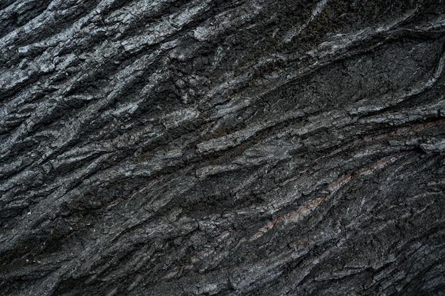 Opluchting textuur van de donkere schors van een boom close-up Gratis Foto