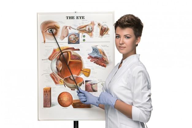 Opticien of oogarts vrouw vertellen over de structuur van het oog Gratis Foto