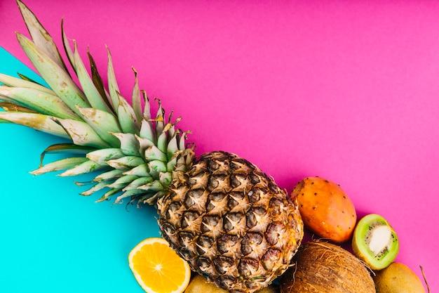 Opuntia fruit; ananas; kokosnoot; sinaasappel en kiwi op dubbele roze en blauwe achtergrond Gratis Foto