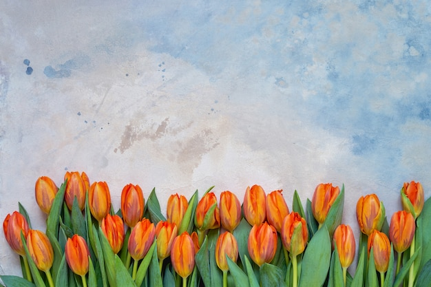 Oranje tulpen op kleurrijke aquarel achtergrond. Premium Foto