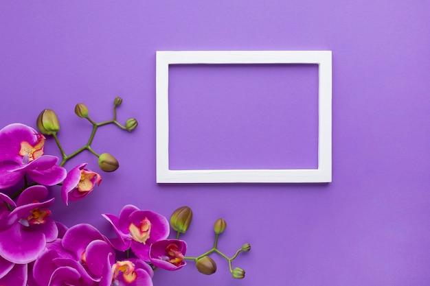 Orchideebloemen op een violette exemplaar ruimteachtergrond Gratis Foto