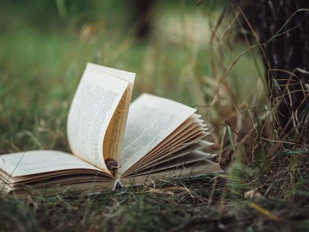 Oud boek ligt op het gras in het park Premium Foto
