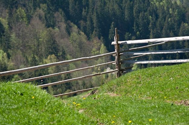 Oude houten gebroken hek in het bos. een zonnige dag op het platteland Premium Foto