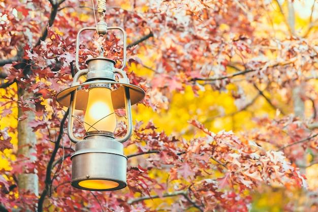 Oude lantaarn met buitenmening in autum seizoen Gratis Foto