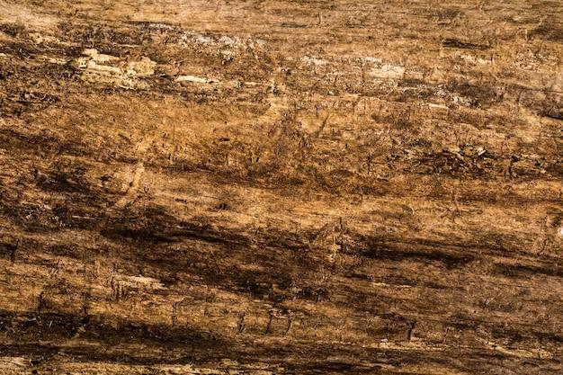 Oude natuurlijke houtstructuur Gratis Foto