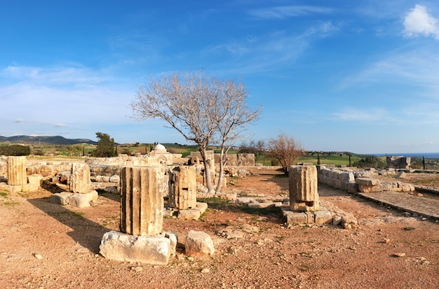 Oude tempelkolommen in het archeologische park van kato paphos in paphos-stad, cyprus Premium Foto