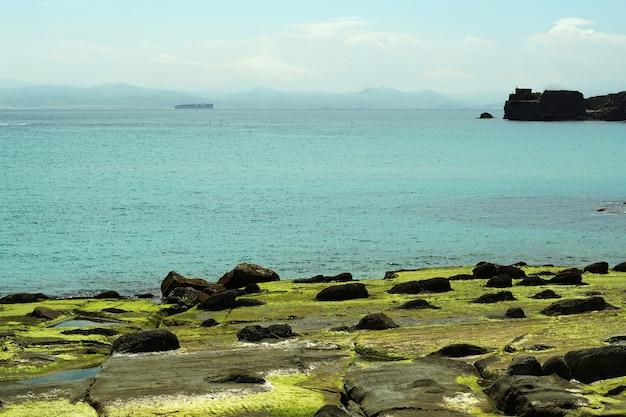 Overdag shot van een strand bedekt met rotsen en mos in tarifa, spanje Gratis Foto