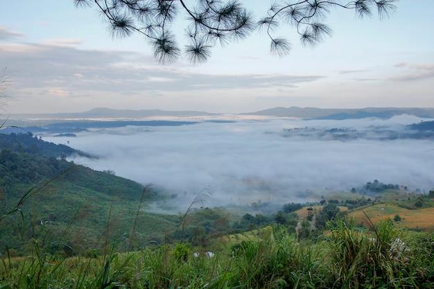 Overzees van mist in khao kho in thailand Premium Foto