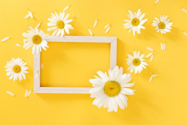 Oxeyemadeliefjes met een exemplaarruimte op een gele achtergrond Premium Foto