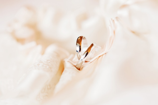 Paar gouden trouwringen op zijden veter. symbool van liefde en huwelijk. Premium Foto