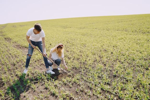 Paar landbouw op landbouwgebied Gratis Foto