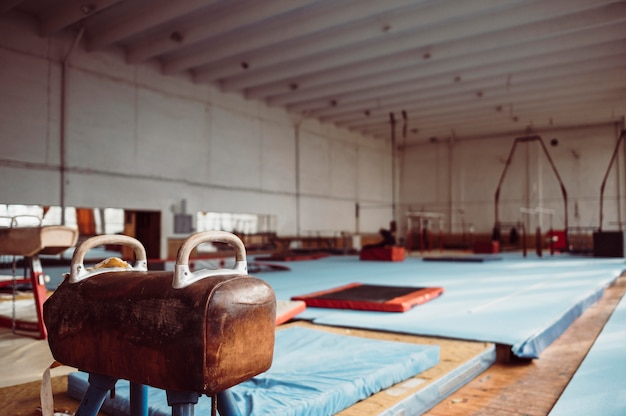 Paard met bogen in gymnastiekruimte Gratis Foto