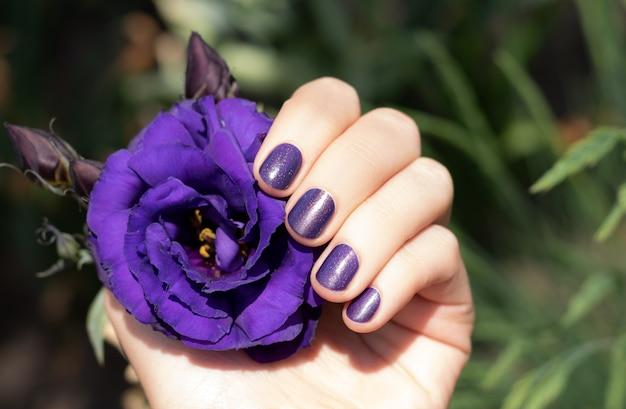 Paars nagelontwerp. vrouwelijke hand met purpere eustomabloem van de manicureholding Gratis Foto