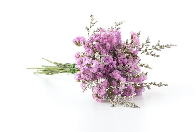 Paarse lavendel decoratie bloemen bloeien Gratis Foto