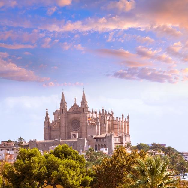 Palma de mallorca kathedraal de la seo mallorca Premium Foto