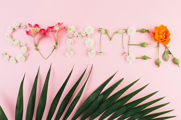 Palmblad dichtbij de zomer het schrijven Gratis Foto