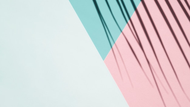 Palmschaduw op een lichtblauwe, lichtblauwe en roze achtergrond Gratis Foto