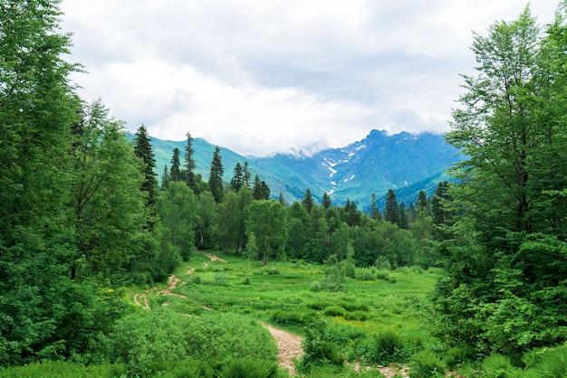 Panorama van de berg Premium Foto