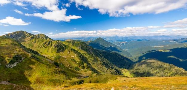 Panorama van de karpaten in de zomer zonnige dag Premium Foto