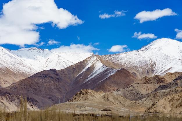 Panorama van de prachtige bergen die leh, india omringen. Premium Foto