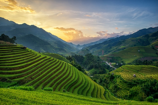 Panoramapadievelden op terrasvormig in zonsondergang bij mu cang chai Premium Foto