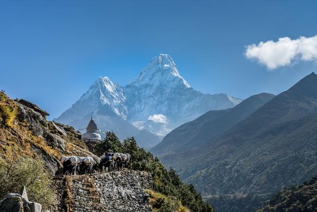 Panoramisch mooi uitzicht op de berg ama dablam met prachtige lucht op weg naar de basis van everest Premium Foto