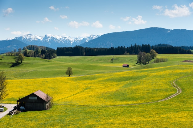 Panoramisch zicht op het prachtige landschap in de alpen Premium Foto