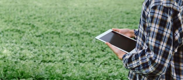 Panoramische banner. agronoom met behulp van mobiele tabletcomputer analyse data-ontwikkeling in hydrocultuur tuin kwekerij, slimme landbouw, digitale technologie en agrarische innovatieconcept Premium Foto