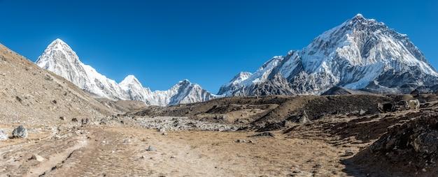 Panoramische opname van een prachtige vallei omgeven door bergen bedekt met sneeuw. Gratis Foto