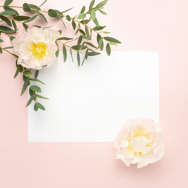 Papier blanco, tulp bloemen, eucalyptus takken op pastel roze achtergrond Premium Foto